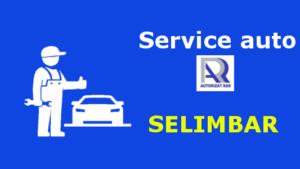 Service auto Selimbar